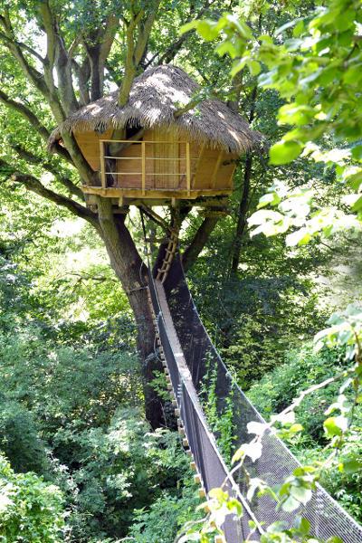 Cabane du Vieux Chêne