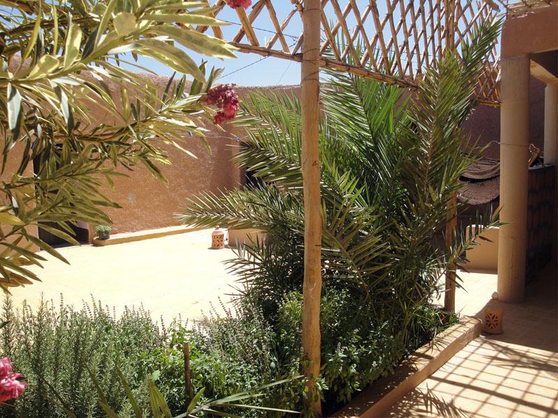 Le patio avec les lauriers rose