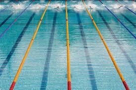 natation piscine