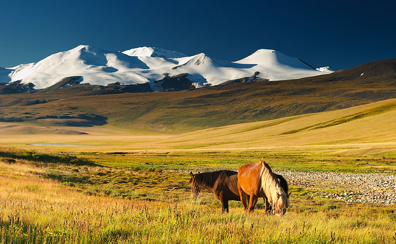 voyage-mongolie